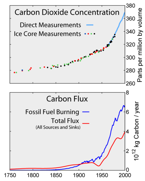 Carbon Dioxide Concentration and Flux